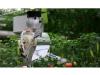 我国农用机器人只会施肥除草?未来能发展成啥样