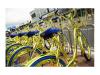 金色共享单车酷奇解散分公司,员工工资不发了?