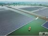 喜讯!全球最大的水面光伏电站将于6月底面世