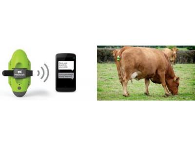 MEMS技术在智能农业里大有可为