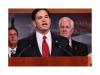 美国参议员要搞到中兴和华为,华为回应:无知