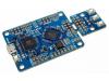 开源FPGA怎么玩?能不能支持Risc V!