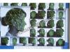 到底该不该用人脸识别技术?IBM/亚马逊/ACLU已经吵得不可开交了