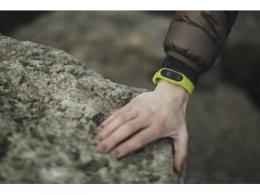 谷歌与 Facebook 竞争可穿戴设备领域,都瞄准了 Fitbit?