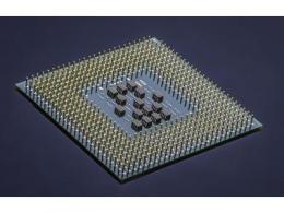 AMD黑天鹅效应已过,英特尔大树仍难撼动?
