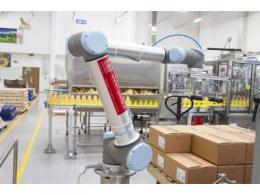 优傲协作机器人 小身躯大能量  UR10执行码垛任务
