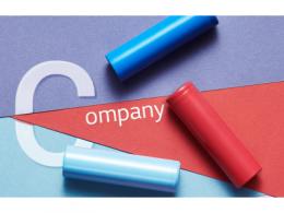 """新冠疫情或导致供应链中断,LG化学拟拆分的电池业务又成了""""香饽饽""""?"""