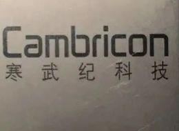 公司A自研寒武纪营收滑坡 人工智能芯片的关键在于应用