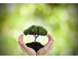 降低碳足迹,助力电子设备环保可持续——德莎生物基环保双面胶带隆重上市
