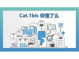"""中速率物联网产业""""风口""""将至,Cat.1bis如何崛起?"""