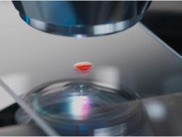 蓝特光学成功在科创板上市,募资6.3亿元用于高精度玻璃晶圆产业基地等