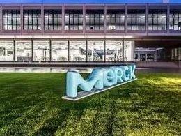 默克新设电子产业材料开发研究所,强攻半导体与面板材料
