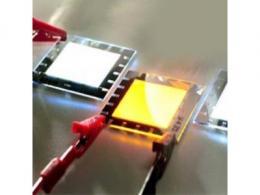 有机发光二极管
