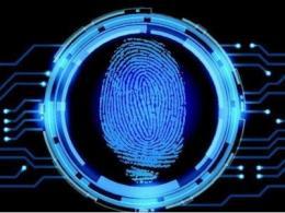 手机上的指纹识别按键到底是如何识别指纹的?