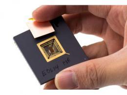 开源的里程碑:基于RISC-V架构的GPU问世