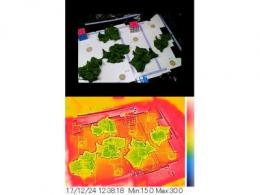 案例分析:FLIR AX8红外热像仪实时监控收集温度数据,助力农业自动化!