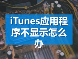 iTunes应用程序不显示怎么办