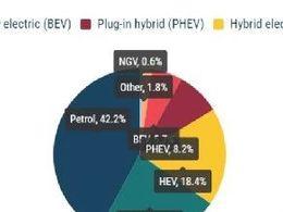 2021年第一季度欧洲电气化渗透率分析