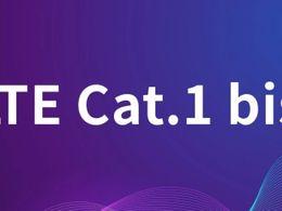 Cat.1究竟是如何崛起的?中速率到底有什么用?