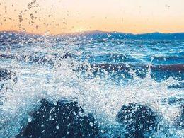 """生态""""群海"""":数字化转型的供需之变"""