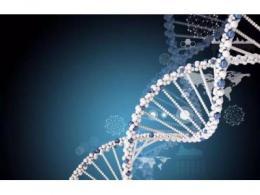 打造国产基因检测芯片,让基因检测成为普惠项目