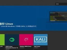 你管这玩意叫双系统?直接在Windows上体验Linux