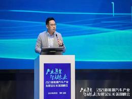 """杨红新:动力电池新周期""""三大挑战"""""""