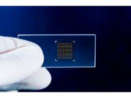 拉索生物:自研自产高密度基因芯片,拓展多元应用场景
