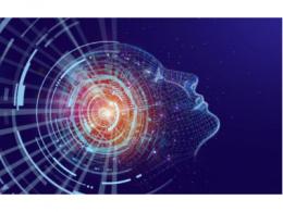 IDC卢言霞:迈向下一代AI,数据、流程、生态