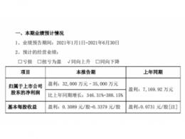 蔚蓝锂芯:上半年净利润同比预增346.31%-388.15%