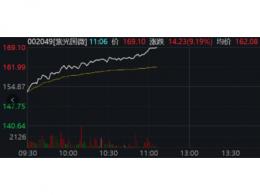 总市值突破千亿元:紫光国微势头强劲,未来可期