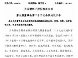 天马微电子任命彭旭辉先生为董事长