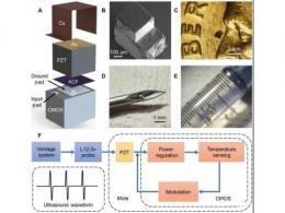 【突破】世界最小的可植入单芯片系统,实现无线体温监测等功能