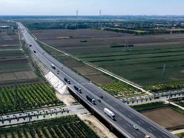 自动驾驶卡车下半场:造车、上市、并购,谁将抢滩终局?