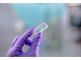 人体器官芯片创业公司大橡科技完成数千万元A+轮融资