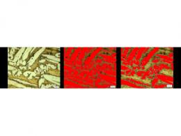 深度学习简化了材料检测的工业图像分析