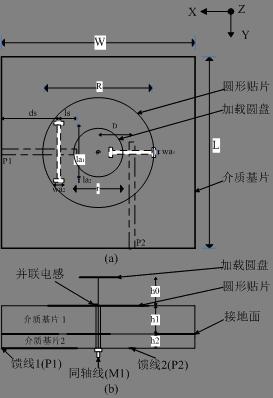 图1  三极化天线结构图.(a)俯视图(b)侧视图