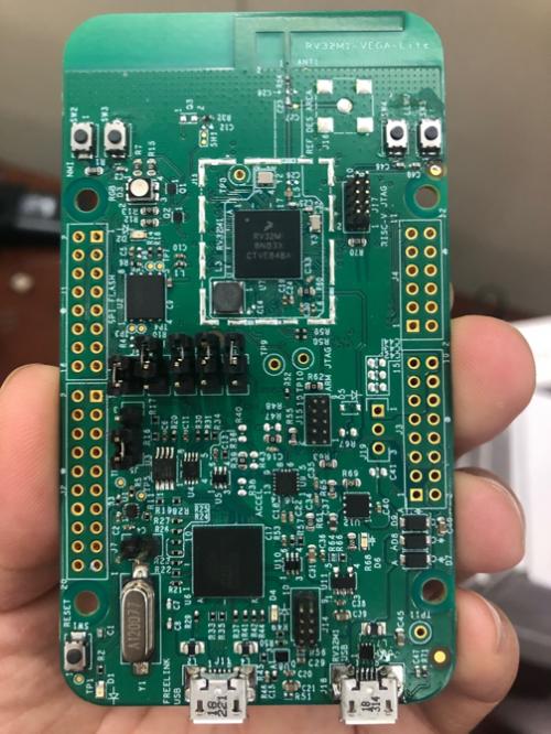 国外芯片技术交流-RISC-V要发展,不是芯片起主导作用,而是生态系统risc-v单片机中文社区(4)