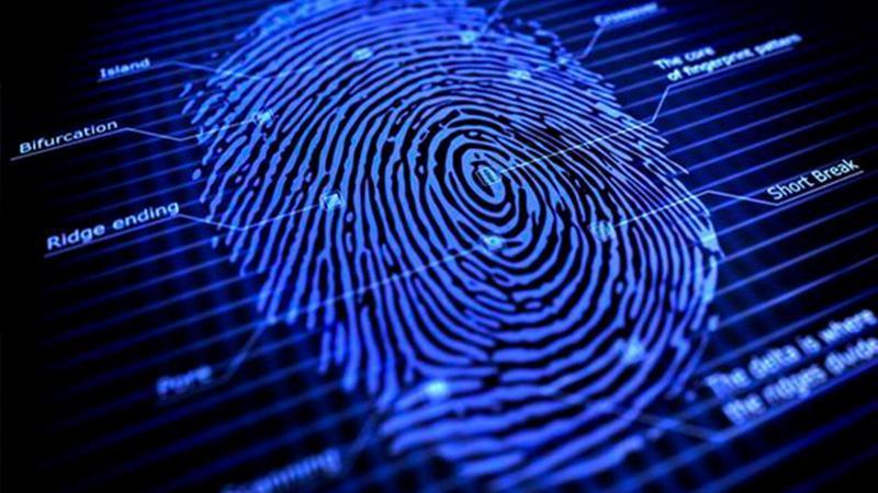 指纹识别技术什么时候发明的