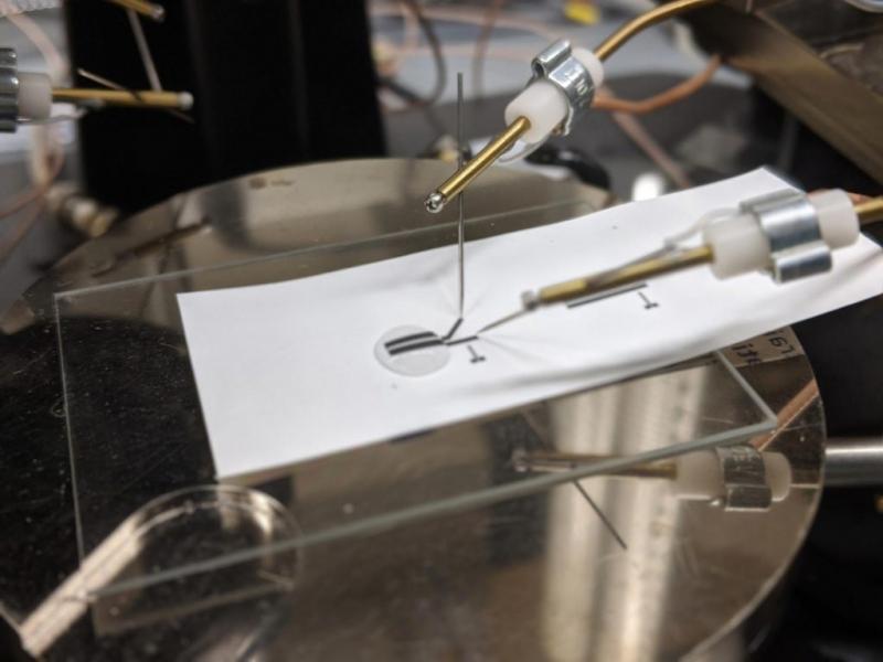 研究人员测试了一种由完全可回收的印刷电子制成的生物传感器。回收工艺回收了近100%使用的材料,材料的性能损失很小