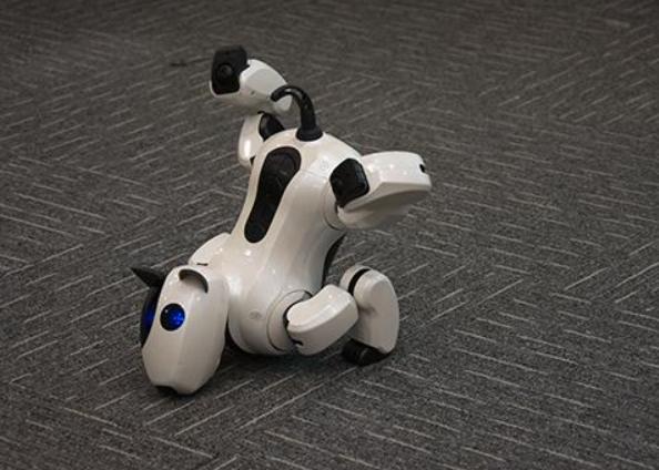1.家用机器人种类