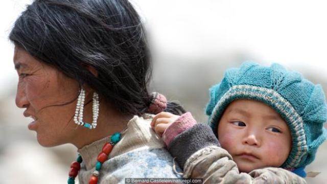 生育是以父母的牺牲为代价的,特别是对于母亲